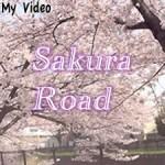 MyMovie)初投稿toVimeo-Sakura Road