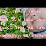video)JAPAN-わびさびはなび